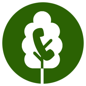 treeswhite